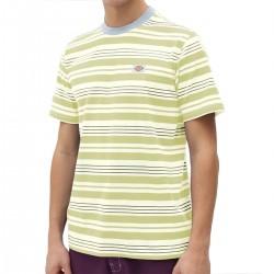 """DICKIES """"Wheaton"""" Tee-shirt..."""
